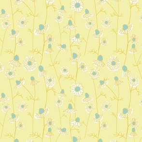 Chamomile flowers - colorway 01