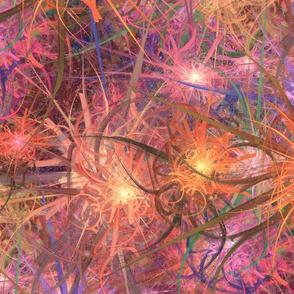 coral cosmos