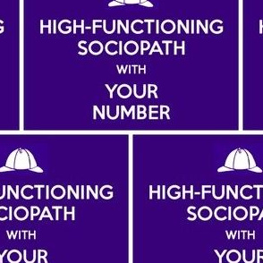 High-Functioning Sociopath - panel