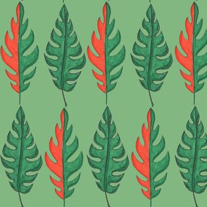 Tropical and Deciduous Leaves