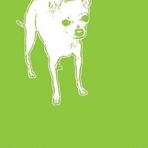Punky Lime Pop Pup!
