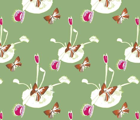 Venus Flutterby Green fabric by jenny_wilkinson on Spoonflower - custom fabric