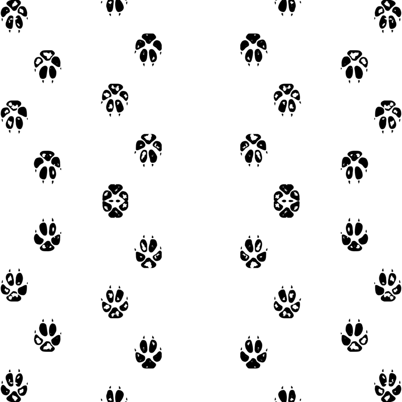 Fox Paw Print Wallpaper