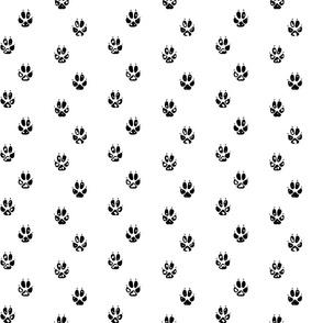 Fox Paw Print