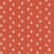 Red Fox Paw Prints
