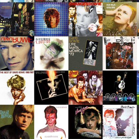 Rrrrrbowie_albums_shop_preview