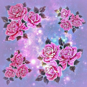 Rose Blossoms Galaxy Violet