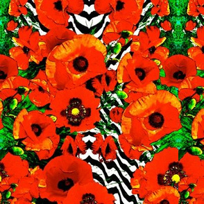 poppyrazzi