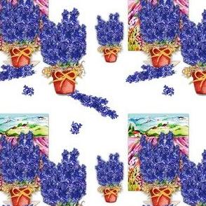Arrangeing_Delphinium_flowers