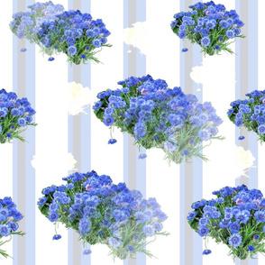 aliby Flower