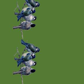 grenbirds