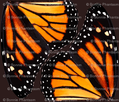 Orange Monarch Butterfly Wings - smaller