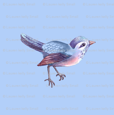 Song Bird in Periwinkle Blue