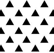 Black_triangles_ed_shop_thumb