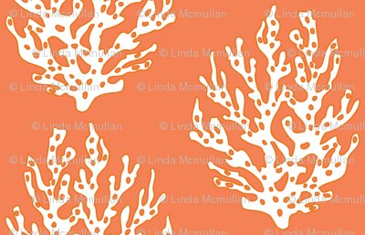 Large Coral Branch Papaya