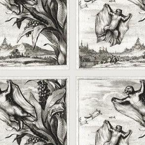 Flying Bat Squirrel