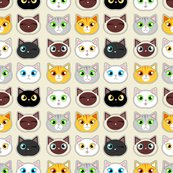 Rcatitude_cat_expressions_shop_thumb