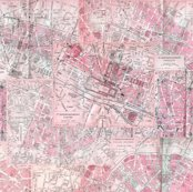 Rrrrparis_map_pattern_red_shop_thumb