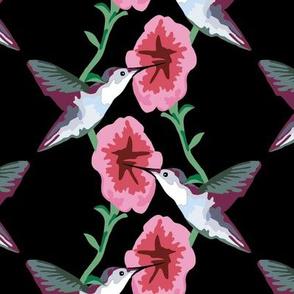 hummingbird black