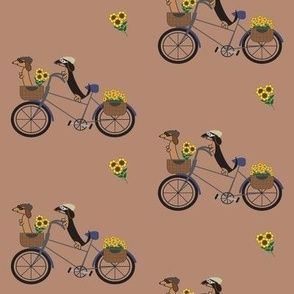 Dachshunds on Bicycle - Dark Brown