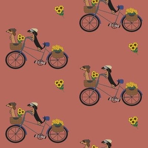 Dachshunds on Bicycle - Red Brown