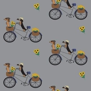 Dachshunds on Bicycle-Dark Grey