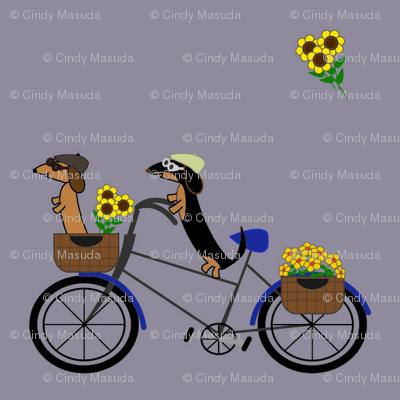 Dachshunds on Bicycle - Eggplant
