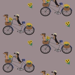 Dachshunds on Bicycle - Eggplant