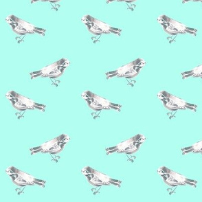 Bird on Aqua