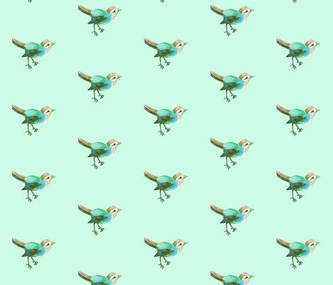 Rbird_mint_shop_preview