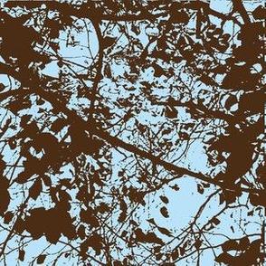 IMG_20131126_161452-ch