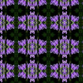 Deep Purple Floral