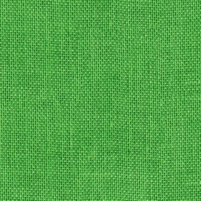 seamless green burlap
