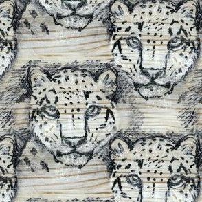 Pine Snow Leopard