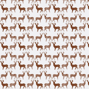 Brown Meadow Deer on White SMALL SCALE