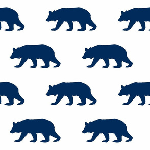 Bear down in Navy
