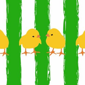 Easter chicks and green stripes