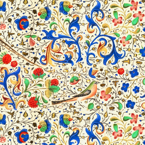 Illuminated Manuscript with Birds, Flowers, Strawberries, and Vines fabric by ninniku on Spoonflower - custom fabric
