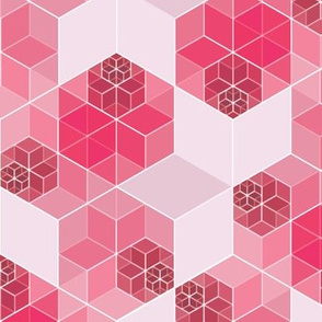 Hexagon 1 in pink