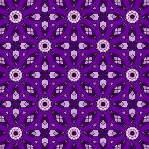 Purple Fool's Cosmos