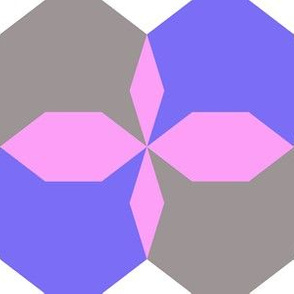 decagon purple - blue - gray - white