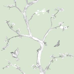 Jenny Modern cherry blossoms on soft green