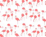 Flamingos_thumb