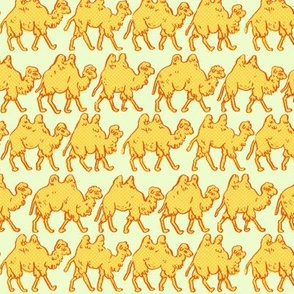 Camel Parade | Light Green