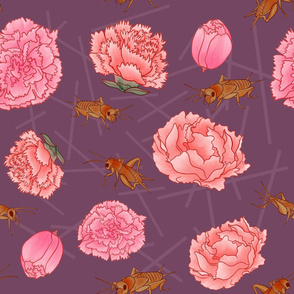 Carnations & Crickets