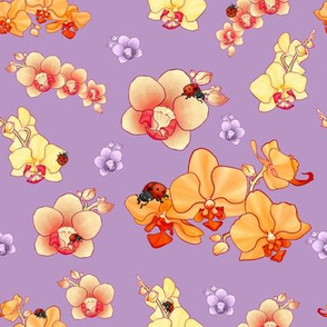 Orchids & Ladybeetles