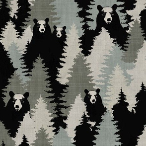Bears - Texture