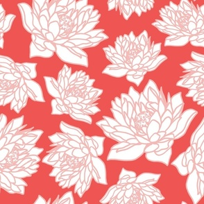 WATERLILLY IN CORAL
