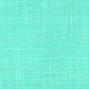 Linen in robin egg blue