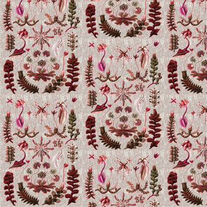 liverworts pink